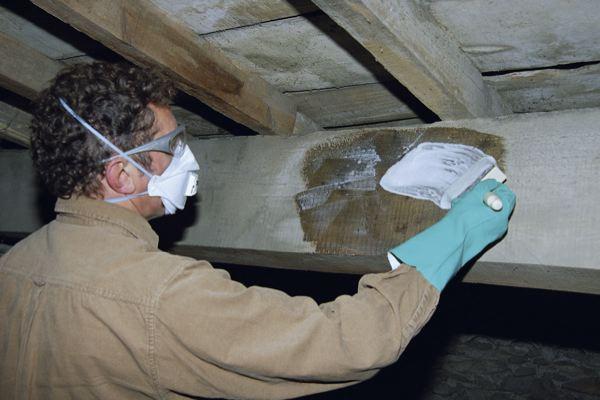 Un Monocouche Efficace Pendant 25 Ans L 39 Atelier Bois