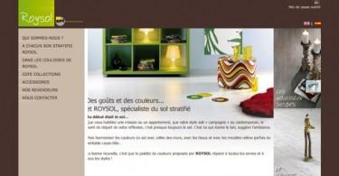Site internet Roysol