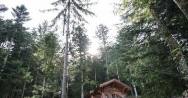 chalet dans les bois