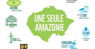 B07-Amazonie