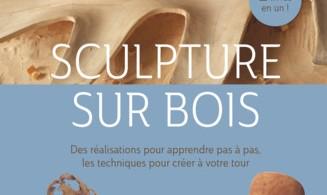 apprendre sculpture sur bois gallery of apprendre sculpture sur bois with apprendre sculpture. Black Bedroom Furniture Sets. Home Design Ideas